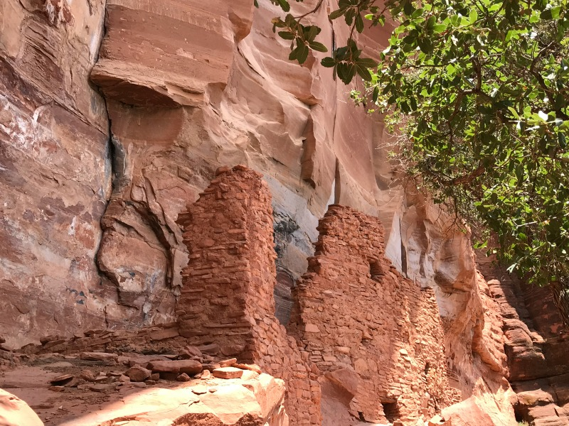 Mini Sedona Travel Guide: Palatki Ruins