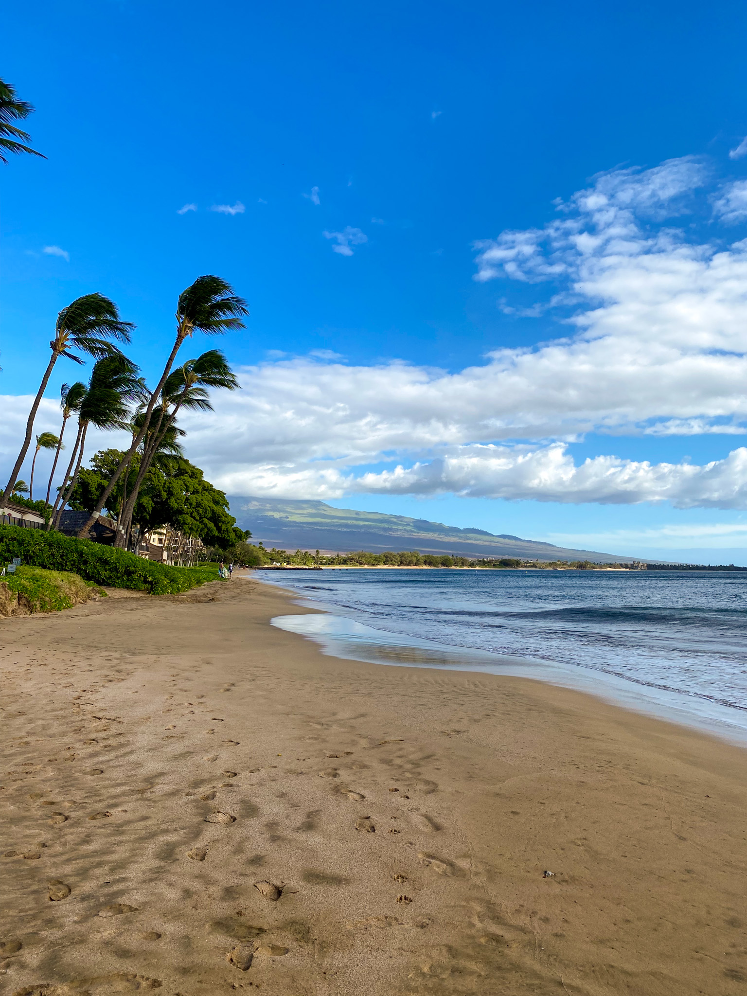 traveling to hawaii maui, beach front stay hawaii maui, maui covid travel, luxury travel, black girl travel guide