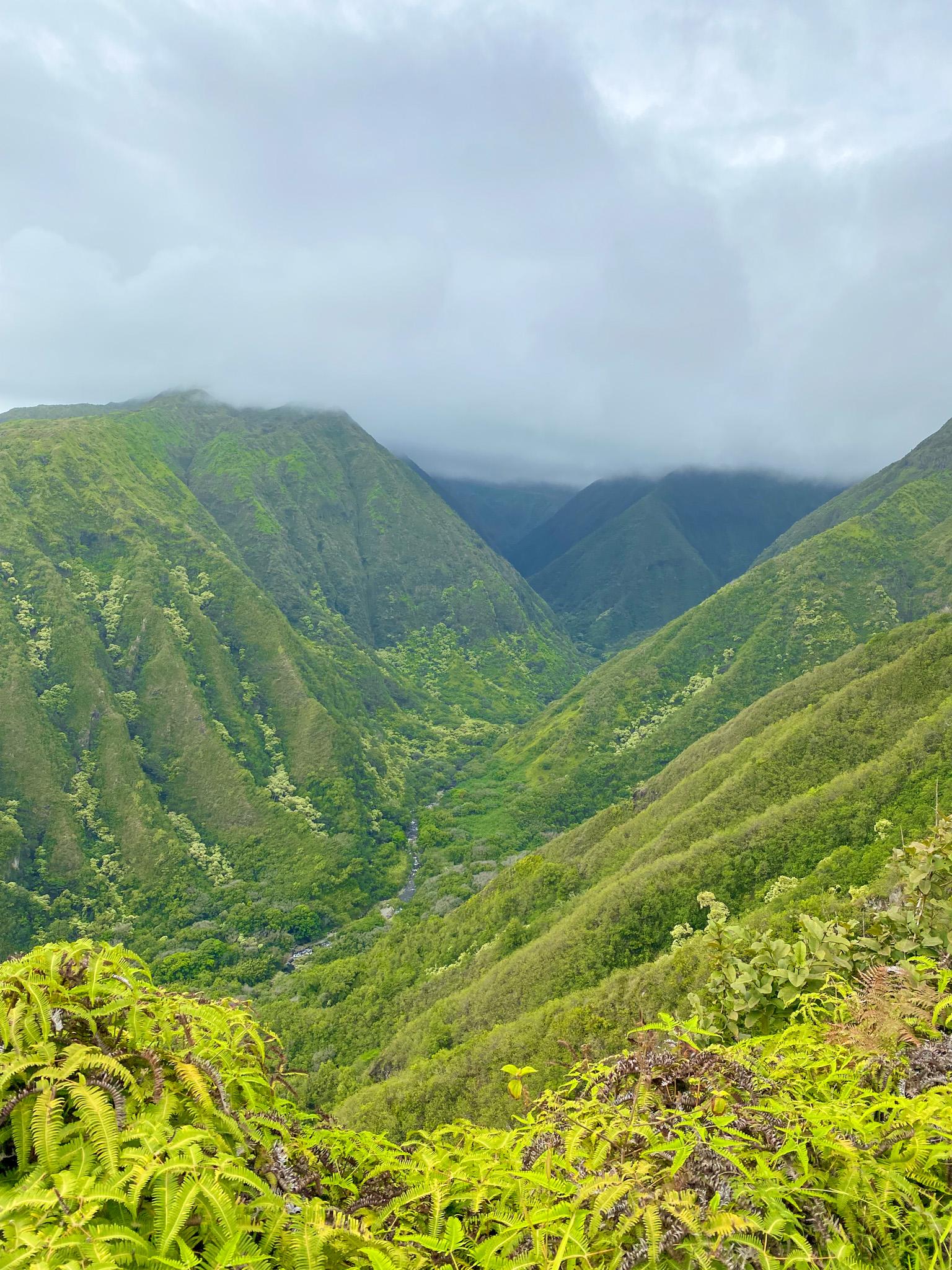 traveling to hawaii maui, hikes in hawaii maui, maui covid travel, luxury travel, black girl travel guide