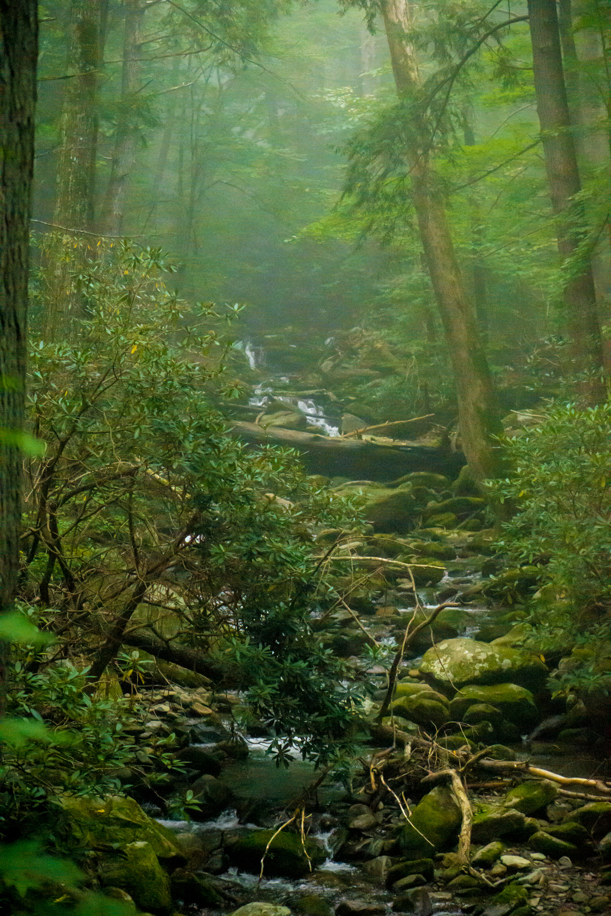 what to do in the Smokey Mountains, Smokey Mountains Tennesee travel guide, black girl travel, what to wear Smokey Mountains, black travel blogger, hiking in the Smokey Mountains
